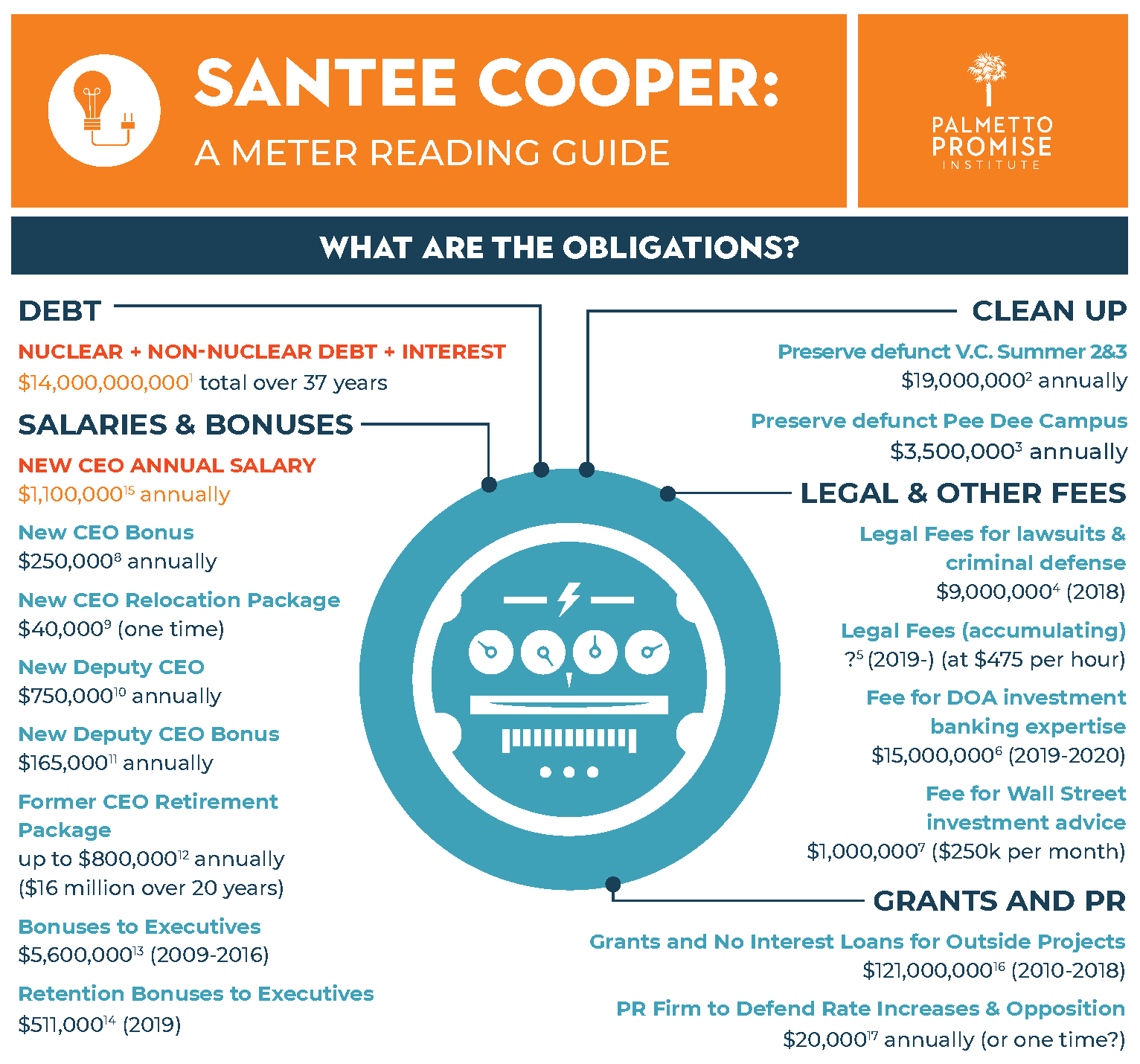 Santee Cooper: A meter reading guide